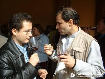 Degustación de vino - Viaje enológica a Ribera del Duero; sitios para visitar en la comunidad de m